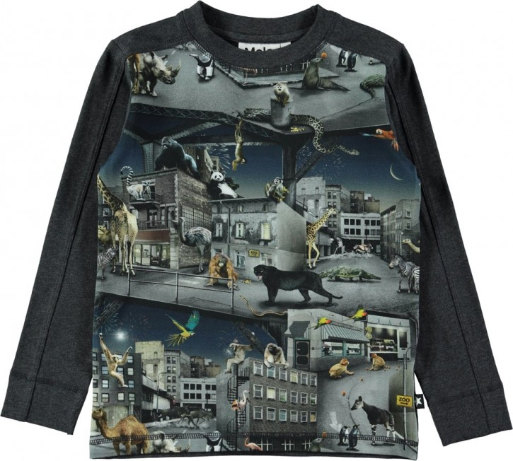 Molo Jungen Langarm-Shirt/Longsleeve RASO Zoo Rebellion