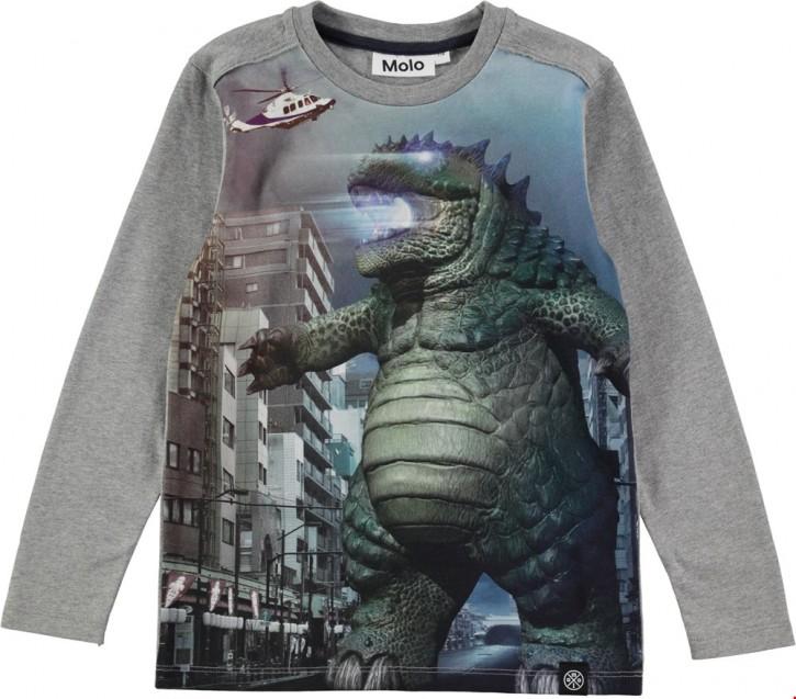 Molo Jungen Langarm-Shirt/Longsleeve REMY Kaju