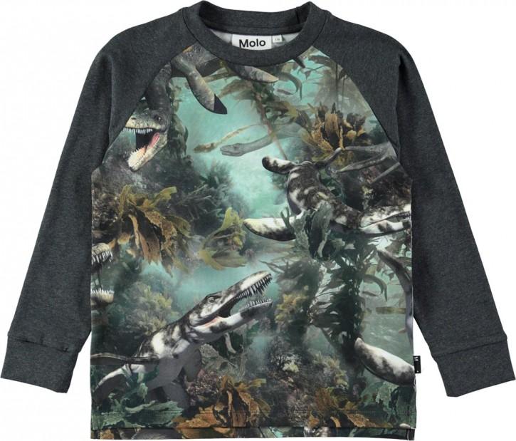 Molo Jungen Langarm-Shirt/Longsleeve RAMIZ Lake Monters