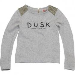 CKS Sweat-Shirt/Longsleeve HARVEY grey mele