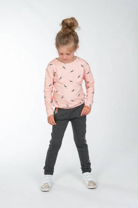 KIE stone Langarmshirt/Longsleeve/Sweater bird peach