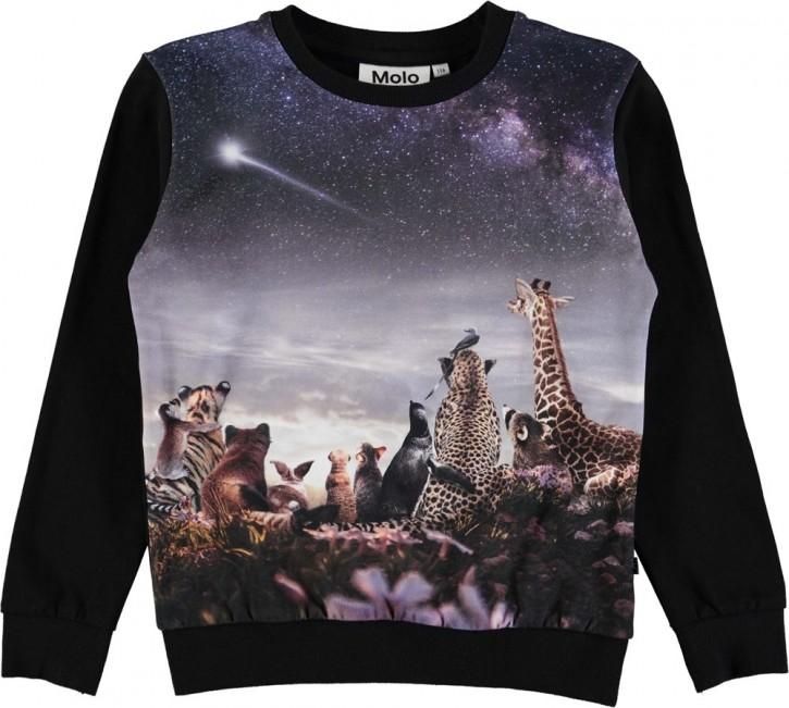 Molo Mädchen Sweat-Shirt/Langarm-Shirt REGINE wish upon a star