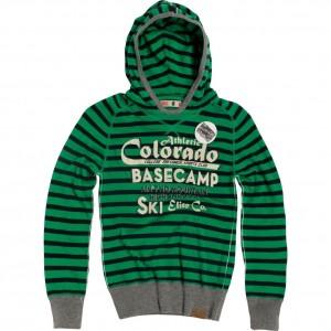 CKS Kapuzen-Pullover Donald fern green