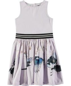 Molo Mädchen Kleid CARLI Treasure Hunters