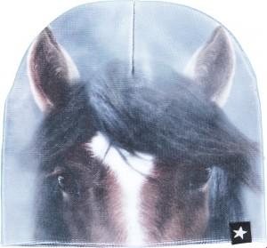 Molo Mädchen Set Mütze Finger-Handschuhe KAYA Misty Pony