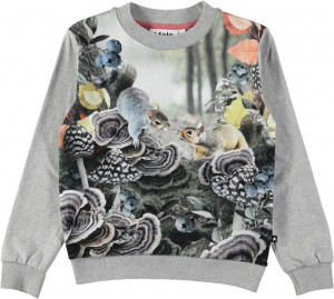 Molo Mädchen Sweat-Shirt/Langarm-Shirt REGINE Forest Squirrels