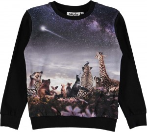 Molo Mädchen Sweat-Shirt/Langarm-Shirt REGINE wish upon a star