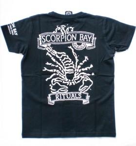 Scorpion Bay T-Shirt Estrella schwarz