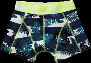 Vingino Boxer/Short 2er-Pack STRIPED TROPIC